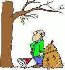 Busy Beaver Handyman lawn and tree  service and firewood sales