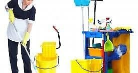 CLEANING SERVICE .CLEANING MAXIMUM SATISFACTION!! COMPETITIVE PRICES. LUTON/ DUNSTABLE 07954157812