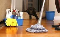 Porfessional House Cleaning Service !!