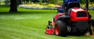 LOCAL MOWING AND MAINTENANCE. CALL TREV.  Mount Gambier Grant Area Preview
