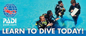 Learn To Scuba Dive