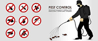 Pest Control Pest Control! We are the Best Pest Control