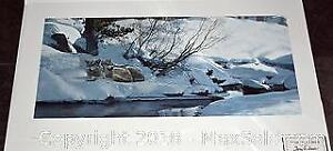 """Terry Isaac """"The Good Place Wolves"""" limited edition print, s/n"""