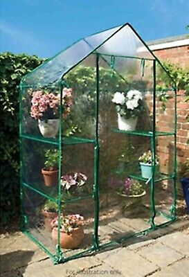 G19 New Useful Walk-In Greenhouse Ideal For Growing Tomatoes & Other Vegetables.