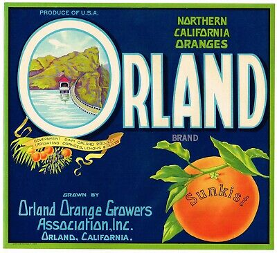 ORIGINAL ORANGE CRATE LABEL VINTAGE ORLAND DAM NORTHERN CALIFORNIA 1930S OLIVES (California Orange Crate Label)