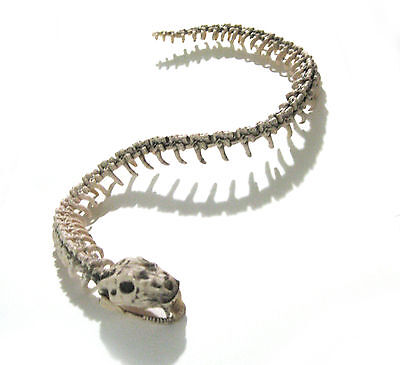 Skelett Schlange Gruselig Lebensgröße Halloween Party Dekoration Requisite 42