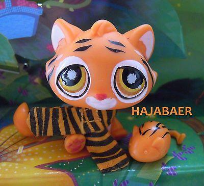 •●★ღ Littlest Pet Shop ★ Süßer TIGER TIGRE ZUBEHÖR  #905 ღ★●• Postcard Pet TOP ()