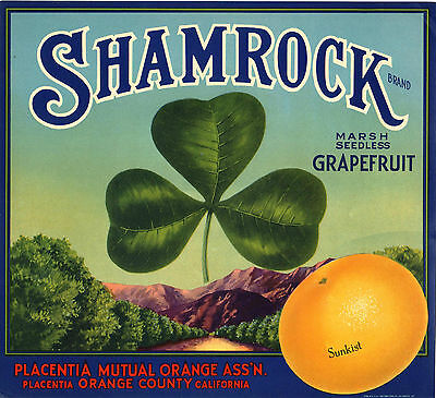 Original  Shamrock Placentia Grove Good Luck Grapefruit Crate Label Not A Copy