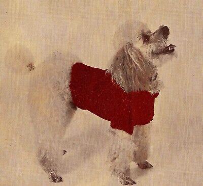 A Vintage Knitting Pattern Instructions Pet K9 Dog Cat Sweater Coat Blanket XXI