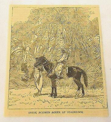1884 magazine engraving ~ SHEIK ACHMED AGEER AT TOADELOOK ~ Sudan