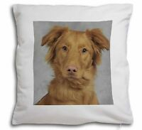Nova Scotia Duck Retriever Morbido Tipo Velluto Cuscino Decorativo Natale, -  - ebay.it