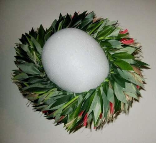 Polynesian Couture Head Greens ~ Island Vibe Unisex Ti Leaf Headdress