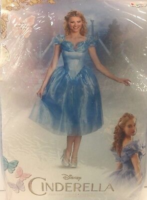 Cinderella Costume, Disney Movie Character, Disguise - Women's/Adult Small](Female Movie Character Costume)
