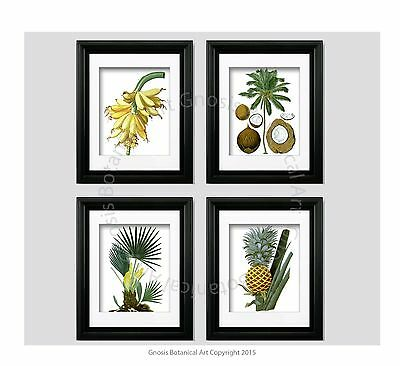 Tropical Wall Decor Unframed Wall Art Pineapple, Coconut,