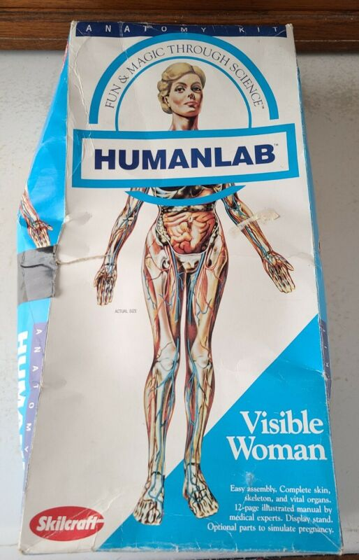 Vintage Visible Man by Revell Woman Anatomy Kit by Skilcraft Lot of Parts Pieces