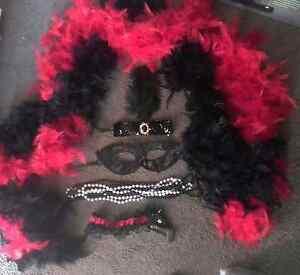 NEW never worn Burlesque costume accessories Rockingham Rockingham Area Preview