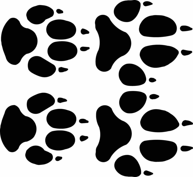 wolf  track / footprint sticker / animal paw print decal - set of 4 tracks