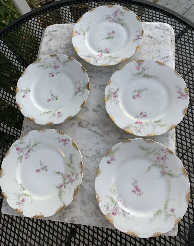 Antique Theodore Haviland Limoges France Pink Flowers Shabby Chic Plates Set 5