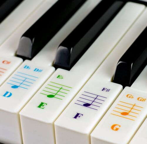 Color Piano Stickers for 49/61/ 76/88 Key Keyboards – Transparent and Removable