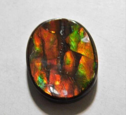 11.10 Cts Natural Canadian Ammolite Cabochon Loose Gemstone 18.7X15X4MM AU29