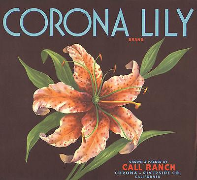 *Original* CORONA LILY Tiger Flower Orange Crate Label NOT A COLOR COPY!!