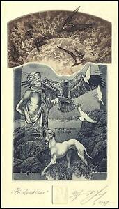 Naidenov Hristo 2007 Exlibris C3 Birdcatcher Bird Vogel Eagle Dog Hund Pets 66 -  Dabrowa, Polska - Naidenov Hristo 2007 Exlibris C3 Birdcatcher Bird Vogel Eagle Dog Hund Pets 66 -  Dabrowa, Polska