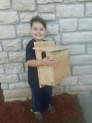 1 Cedar Squirrel House, Nesting Box ~ Three Brothers Birdhouses