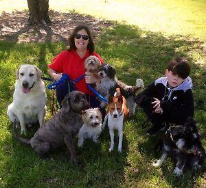 ST GEORGE DOG WALKING OATLEY Oatley Hurstville Area Preview