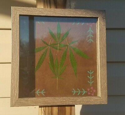 Cannabis Hemp Leaf Art Shadowbox