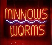 Minnows and / or Worms