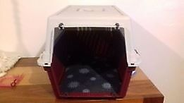 Lightweight plastic cat carrier with metal front and cushion