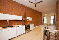 TOTALLY RENOVATED LOFTS IN THE HEART OF THE CITY