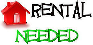 Seeking furnished/outfitted pet-friendly apt/condo