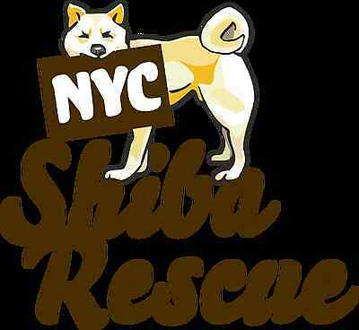 NYC Shiba Rescue, Inc.