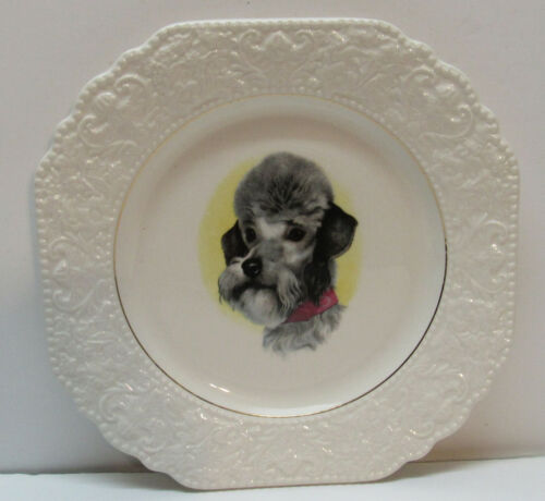 Poodle Plate Lord Nelson Pottery Hand Crafted in England Vintage