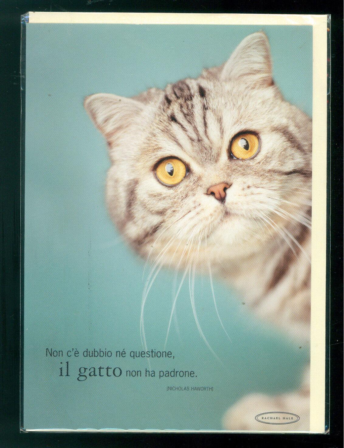 RACHAEL HALE BIGLIETTO AUGURI GIFT CARD MEDIO GATTO CAT 2004 BUSTER