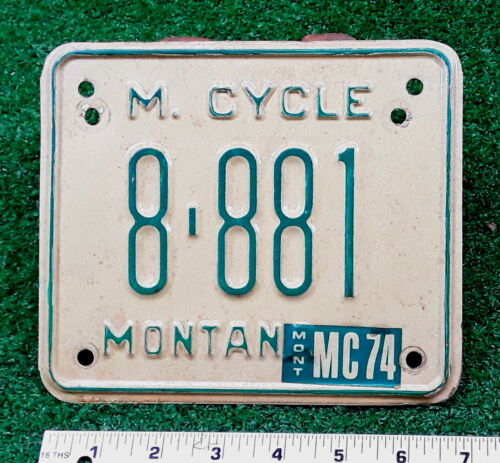 MONTANA - 1974 motorcycle license plate - nice one, Fergus County, neat number