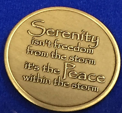Serenity Lake Peace Within The Storm Bronze Medallion Chip Coin AA NA Sobriety