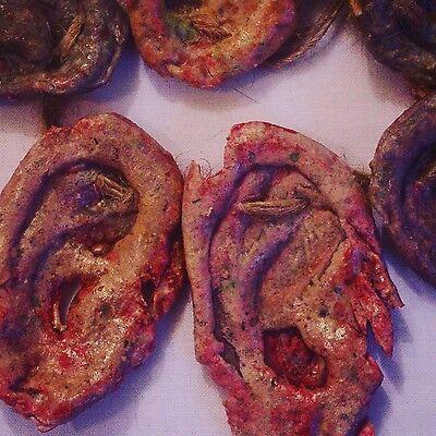 3 Zombie Ear Necklace DIY Zombie Costume kit Walking Dead Cosplay Zombie Strike!