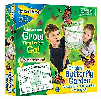 Live Butterfly Kit Waterproof Insect Lore Educational Science Toy for Kids NEW