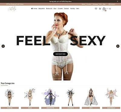 Dropshipping Website For Sale - Own A Lingerie Store Ecommerce Website Business.