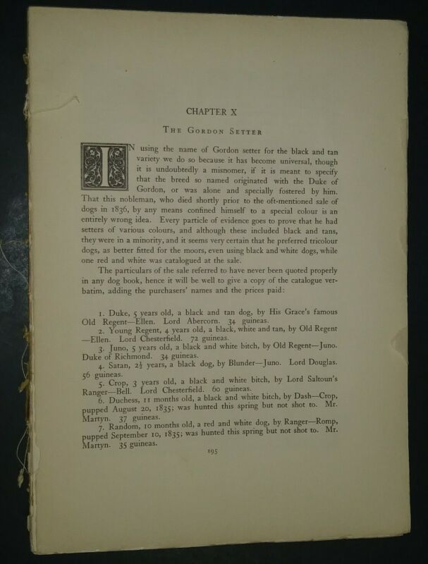 Gordon Setter Breed History & Photos from the 1906 Dog Book by James Watson