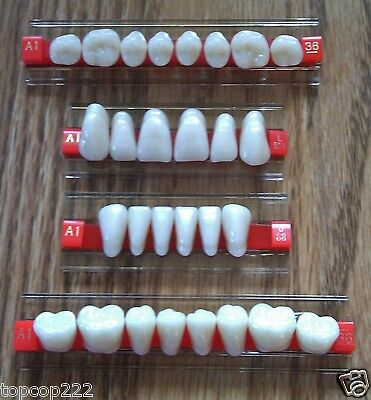 Smile Dental Teeth A1 Shade Full Mouth Set. Denture Acrylic Synthetic Resin. Usa