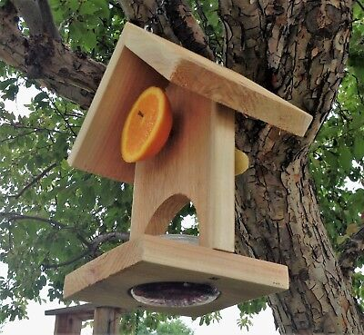 Jelly and sliced fruit bird feeder
