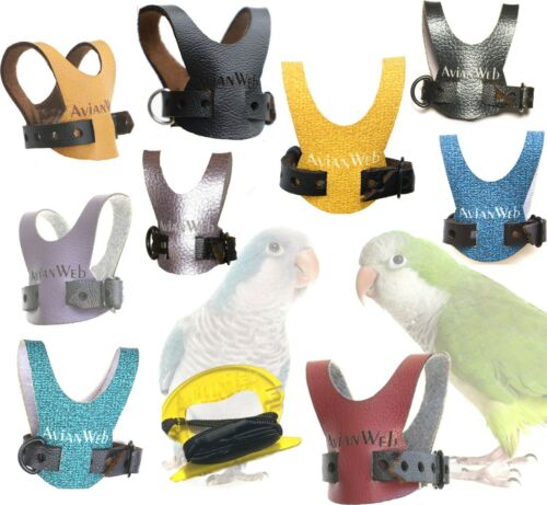 EZ Quaker Parrot Harness & 6 Foot Leash