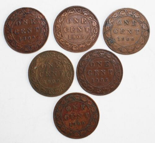 6 Coin Lot 1909 Canada Large Cent Bronze Coins 1c Canadian Pennies Average Circ