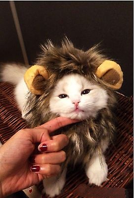 Pet Hat Lion Mane Wig for Cat Dog Fancy Dress Up with Ears Christmas Party Gift