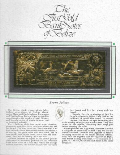 22kt Gold $50 Belize 1981 Banknote- BROWN PELICAN - RARE UNC