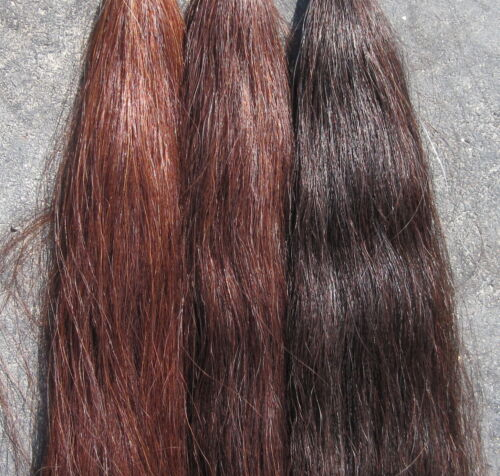 Tail Extension 1lb Your Choice Color by KATHYS TAILS FREE Bag AQHA NSBA FEI