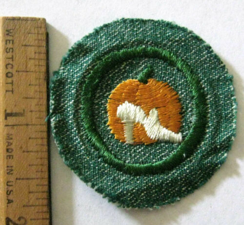 Vintage 1948-55 Girl Scout GOOD GROOMING BADGE Pumpkin Cinderella Slipper Patch